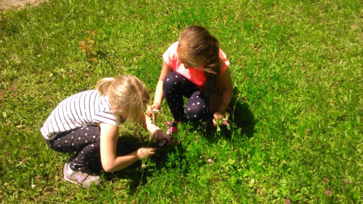 """III Gminny Konkurs """"Moje wakacyjne spotkania z przyrodą"""", czyli """"Co w trawie piszczy?"""""""