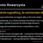 rowerzysta6